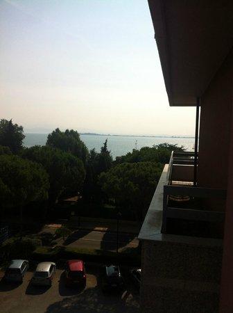 Hotel Oliveto Lago di Garda - Desenzano : Vista Lago