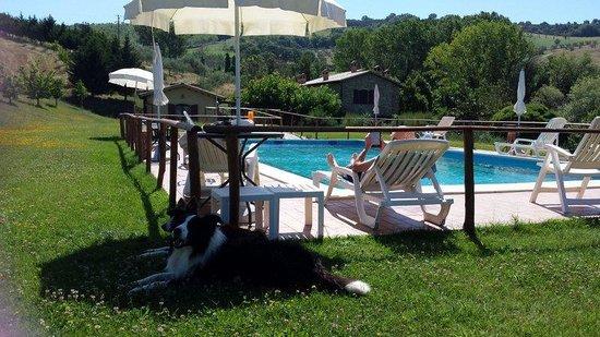 Casale Giuncheto: piscina