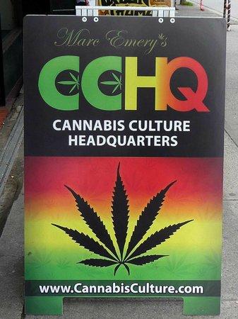 Centre-ville de Vancouver : Yeah! Right on Man.