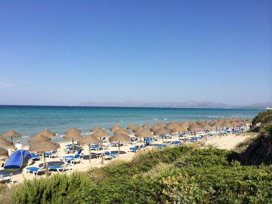 IBEROSTAR Albufera Playa: Beach and sea