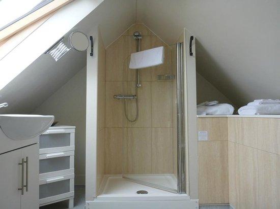 Fields Lodge Bed & Breakfast: Great bathroom