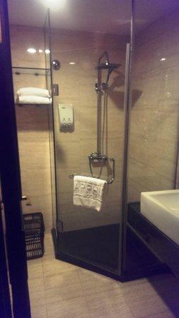 Sapphire Hotel: Shower