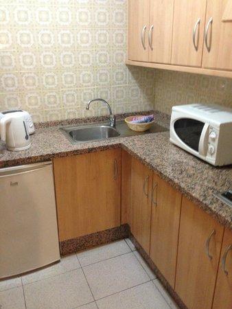 Apartamentos Caribe: Bug ridden kitchen