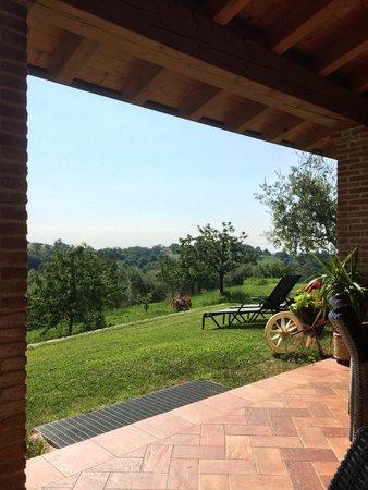 Azienda Agrituristica L'Oro Rosso - Alloggio con Cucina : Vista area relax