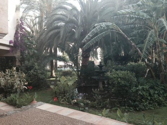 Lago Garden Hotel: Garten