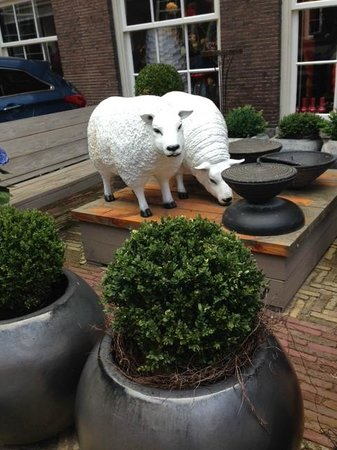 Sofitel Legend The Grand Amsterdam: милые барахи пасутся рядом с главным входом в отель