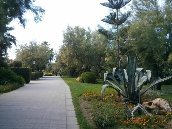 PortBlue Club Pollentia Resort & Spa: jardines