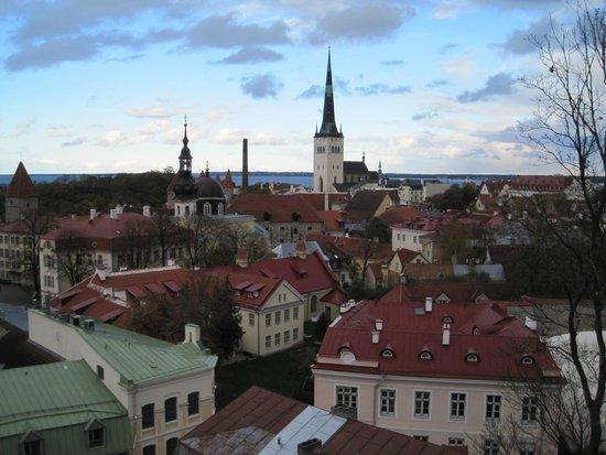 Food Sightseeing Estonia Day Tours: Beautiful view of Tallinn