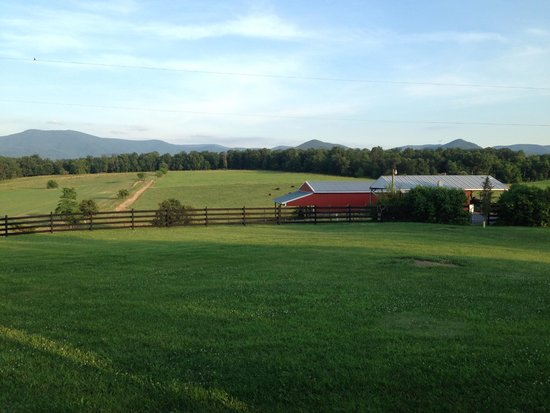 Piney Hill Bed & Breakfast : Awoke to this each morning!
