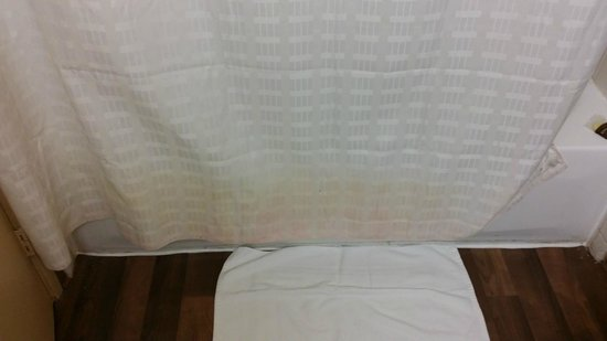 Extended Stay America - Nashville - Airport - Music City: Stains on shower curtain