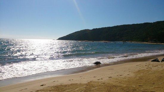 Tartaruga Beach : Praia da Tartaruga