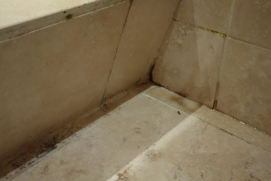 The Lamorna Cove Hotel : Mould was in all corners of the bathroom.