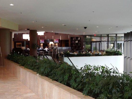 Hilton Alexandria Mark Center: Lobby/bar areas.