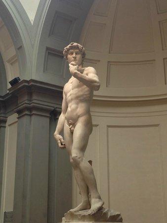 Accademia di Belle Arti (Galleria dell'Accademia): David