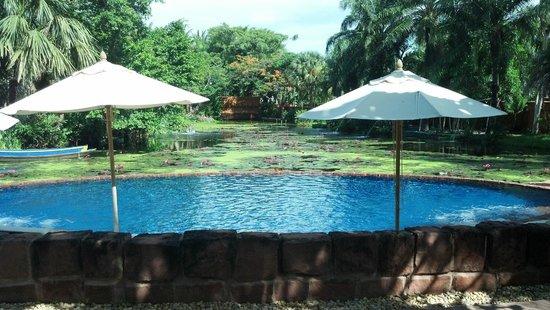 Anantara Hua Hin Resort : The Serene & Beautiful Lotus Pond Pool