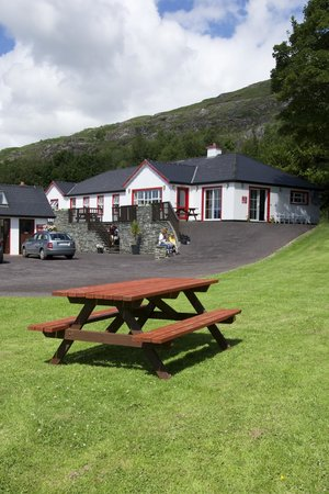 Hungry Hill Lodge and Campsite: The Hostel