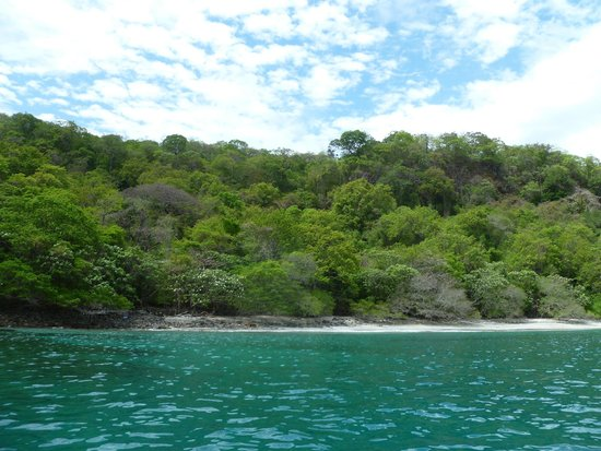 Almaco Diving & Tours: Quiet and private area for kids to snorkel
