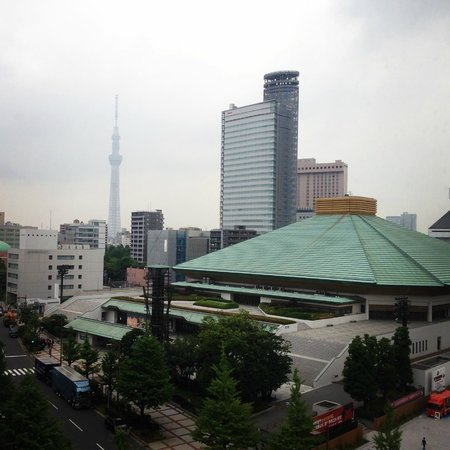 Ryogoku Pearl Hotel: View from our floor.