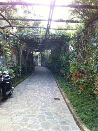 Relais Villa Angiolina: lane way to/from the Inn