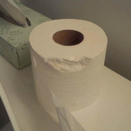 Seabonay Beach Resort: Did someone take a bite out of this toilet paper roll?