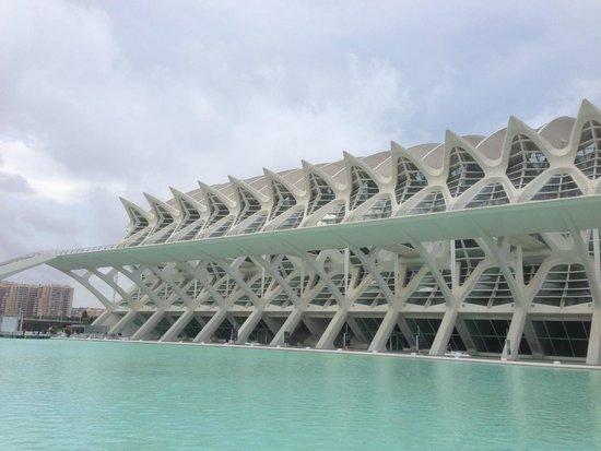 Ciudad de las Artes y las Ciencias: Incredible architecture