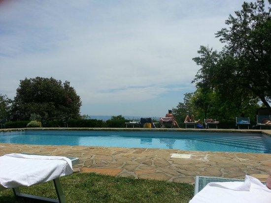 Fattoria San Donato : Pool