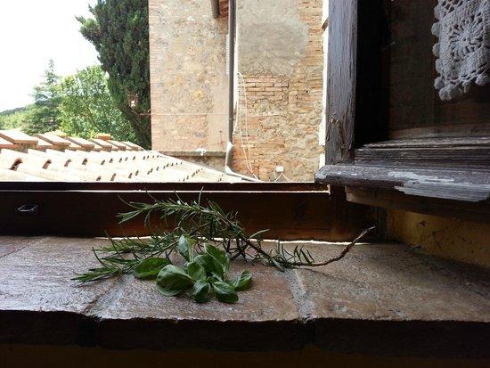 Fattoria San Donato : Romantic