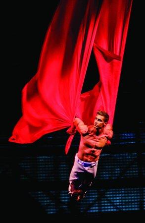 La Nouba - Cirque du Soleil: La Nouba by Cirque du Soleil