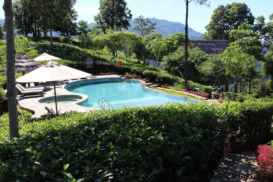 98 Acres Resort and Spa: Pool view from restaurant