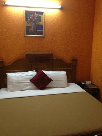 Rahul Palace Hotel: our room..