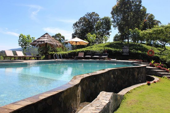 98 Acres Resort and Spa: Pool