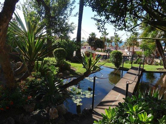 Best Siroco: little walkway ver fish pond