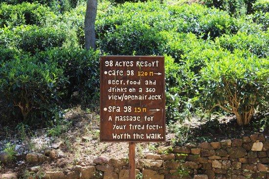 98 Acres Resort and Spa: Garden