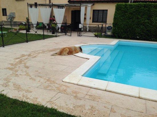 Resort Corte Pellegrini: Amore lui �� mi manca già questo posto!