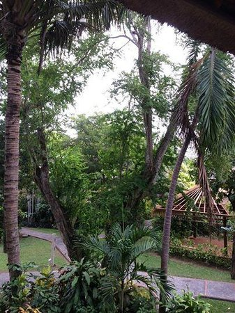 Mercure Resort Sanur : View from the room