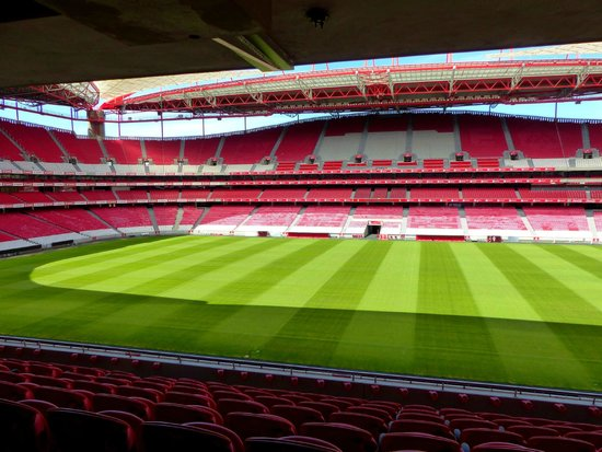 Estadio do Sport Lisboa e Benfica: The Stadium