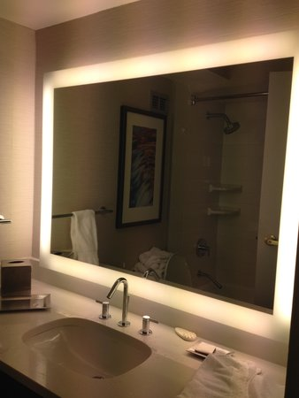Hilton Albany: Love this mirror