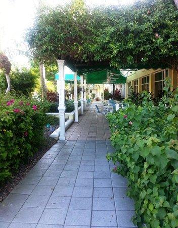 Holiday Inn Key Largo: Walkway/outside dining area outside of Pool