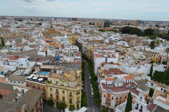 Catedral de Sevilla: Vista da Torre Giralda