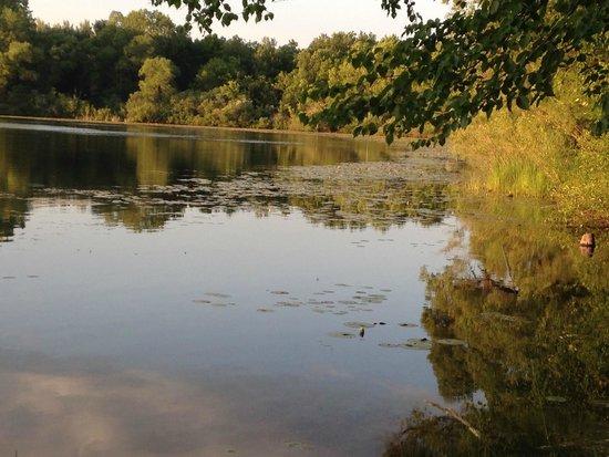 Lake Lenwood Beach & Campground: Ahhhhhhhh...the fish are biting!