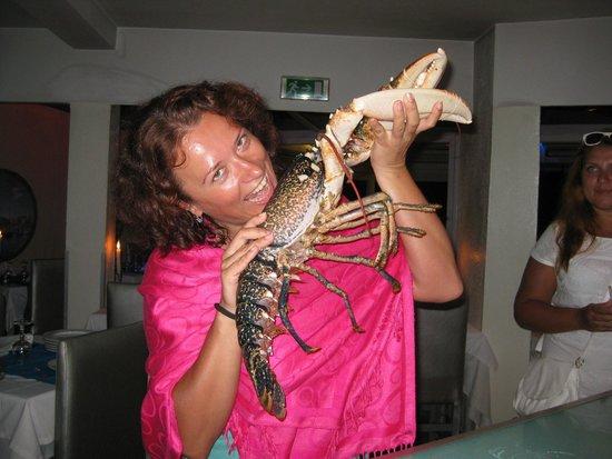 Le Flore : Самый большой омар, которого я съела! Еще жив!