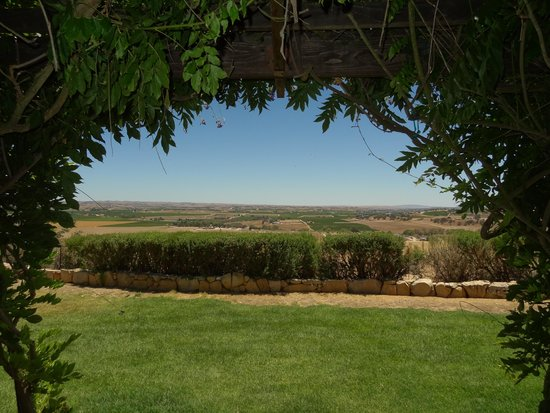 RN Estate Vineyard and Winery: view