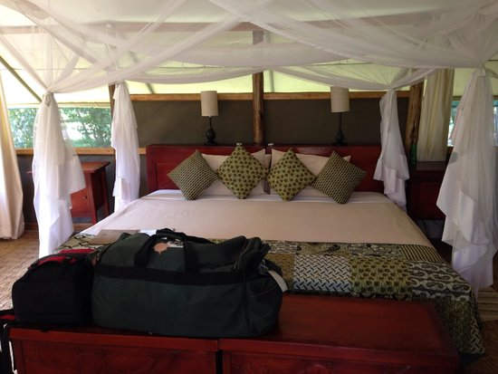 Ishasha Wilderness Camp: Inside of tent
