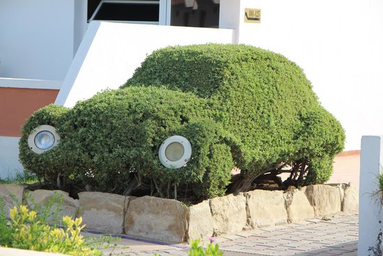 Hotel Club Al Moggar: Шедевры садовника - машинка