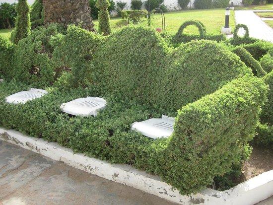 Hotel Club Al Moggar: Шедевры садовника - живой диван