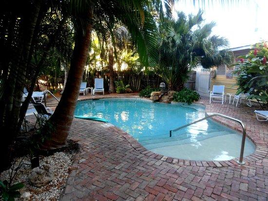 Angelina Guest House: giardino e piscina