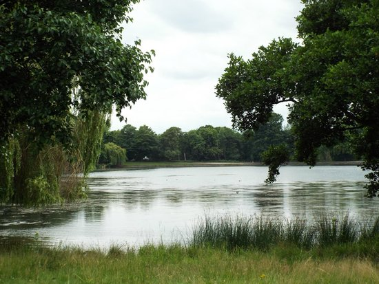 Wollaton Hall and Park : The Lake