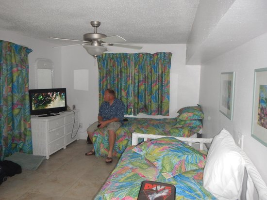Amoray Dive Resort : The main room. there was a seperate bedroom and bath