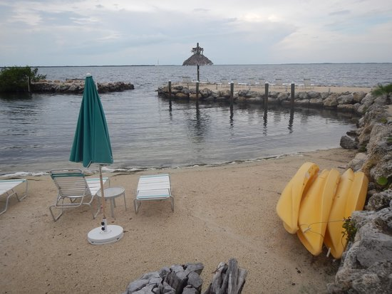 Amoray Dive Resort : a private beach area and rental kayaks