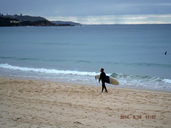 Manly Scenic Walkway: surfer
